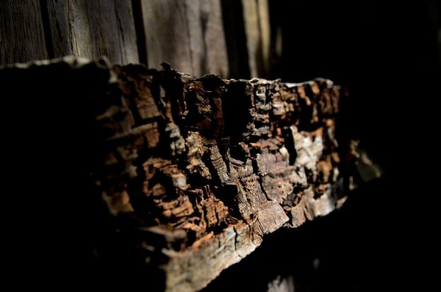 Rotting Wood Pallet
