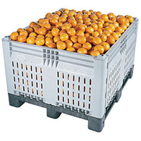 Food & Agricultural Pallets & Bins